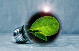 Deze 5 energiemaatschappijen zijn 100% groen
